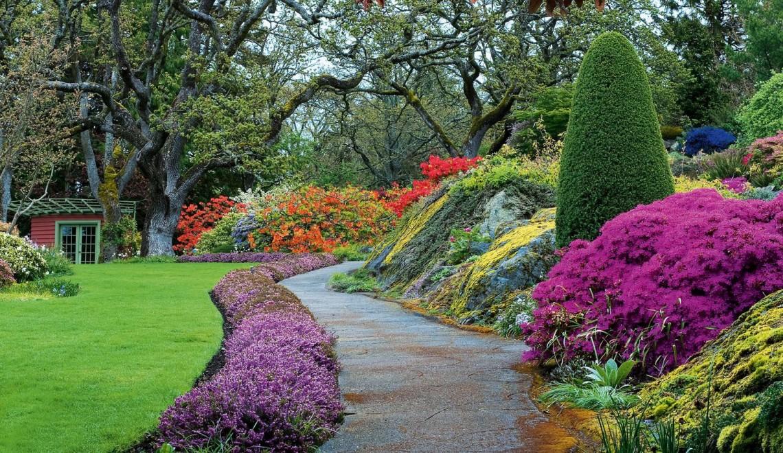 Un jardin zen et coloré - Deco-In